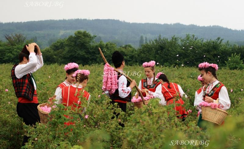 Ритуал сбора розы